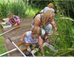 Pond dipping 6